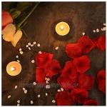 3500 Stück Rosenblätter Seide Künstliche Rosenblüten Rosen Blätter Blüten Konfetti Kunstblumen Seidenblumen für Hochzeit Party Geburtstag Valentinstag Bett Tisch Romantische Deko Champagner