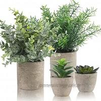 Alagirls 4 Stück Künstliche Pflanzen Mini Kunstpflanzen Eukalyptus Rosmarin Sukkulenten mit Topf Schreibtisch Küche Badezimmer Garten Deko