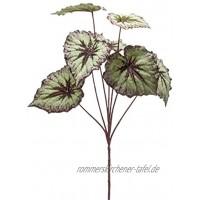 artplants.de Set 6 x Kunstzweig Blattbegonien Zweig Meira grün-violett 60cm Deko Buntnessel