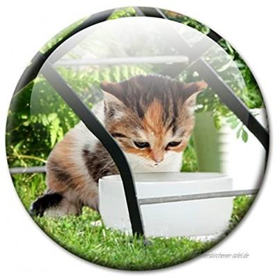 """Kühlschrankmagnet Katze mit lustigem Katzenmotiv """"Unter dem Gartenstuhl!"""" Magnete für Magnettafel Bunt stark groß rund 50mm"""