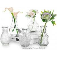 Glasvase Für Blumen 5er-Set Klare Vintage Bud Vase Süße Mini-Erbsenvase Für Tischdekoration Innendekor Hochzeit klar 5