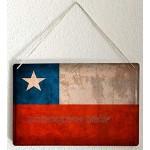 LEotiE SINCE 2004 Blechschild Dekoschild Küche Garage Welt Reise Chile Flagge Wand Deko Schild 20X30 cm